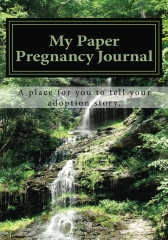 adoption journal, paper pregnancy journal, waterfall, lush waterfall, Virginia waterfall, serene waterfall, serene place