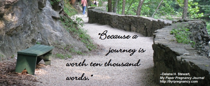 path, stone path, wooded path, forest path, journey path