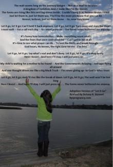 Let it Go, Adoption, Adoptive Parents Song