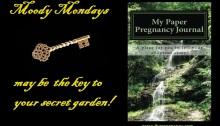 paper pregnancy, journal, adoption